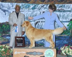 Electric City, MT - Winners Dog 2013.jpg
